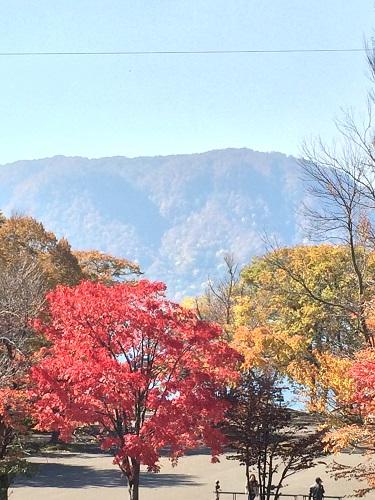 十和田湖 休屋
