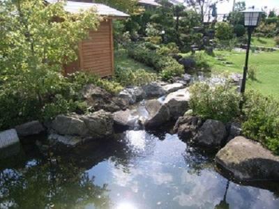 鯉の泳ぐ庭4