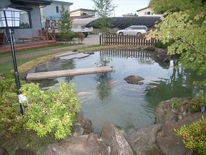鯉の泳ぐ庭5